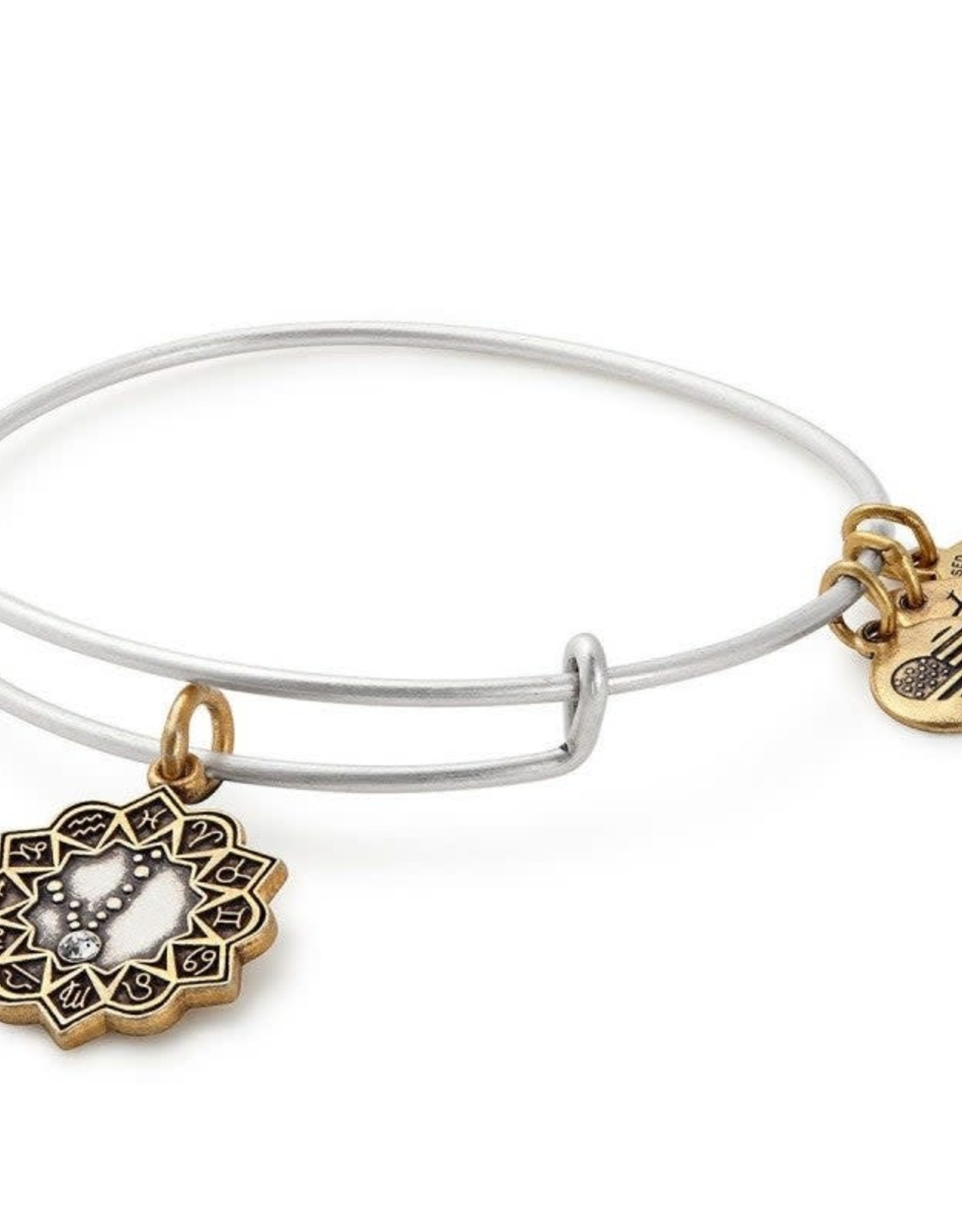 Alex and Ani Pisces, Two Tone