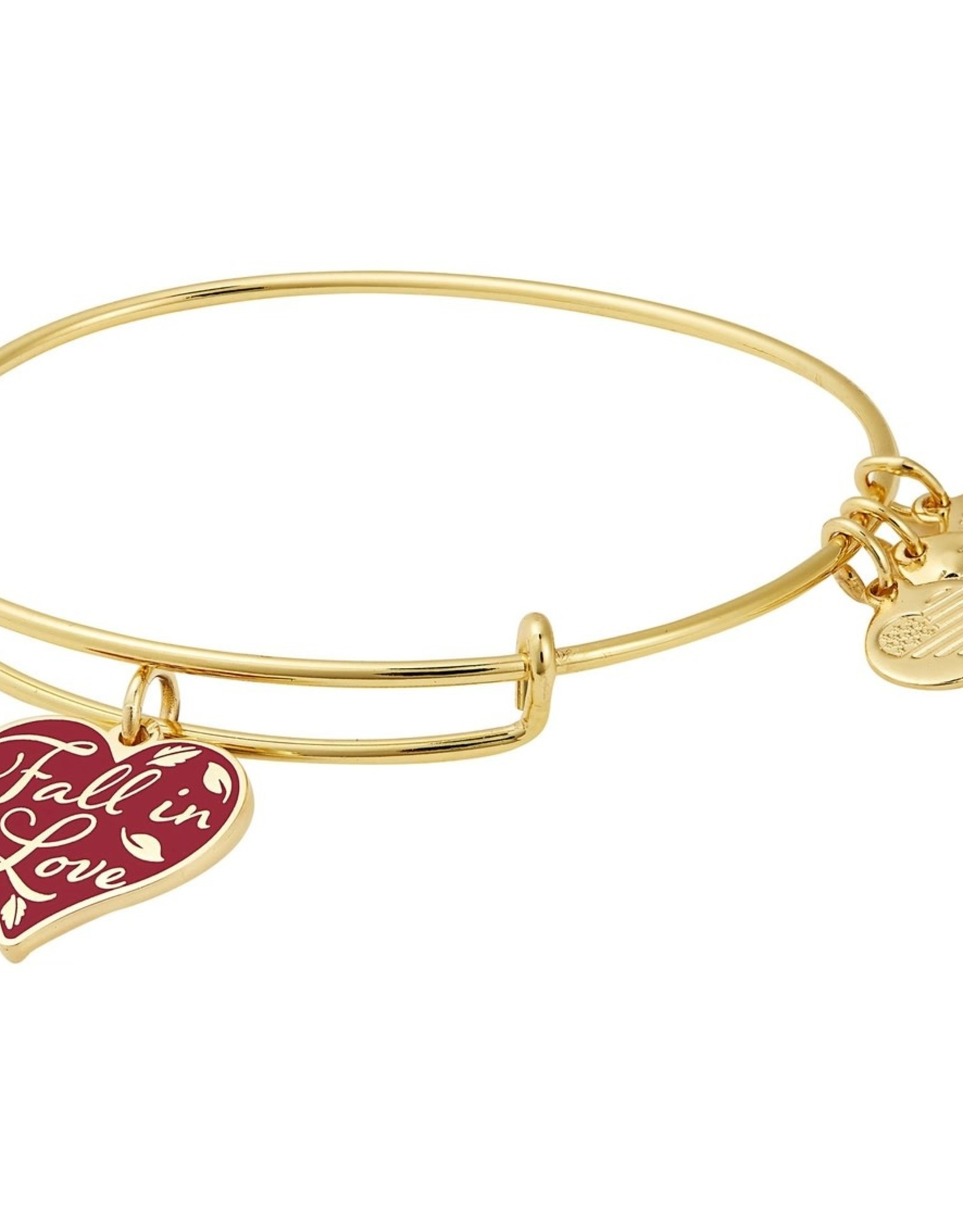 Alex and Ani Color Infusion, Fall In Love FINAL SALE