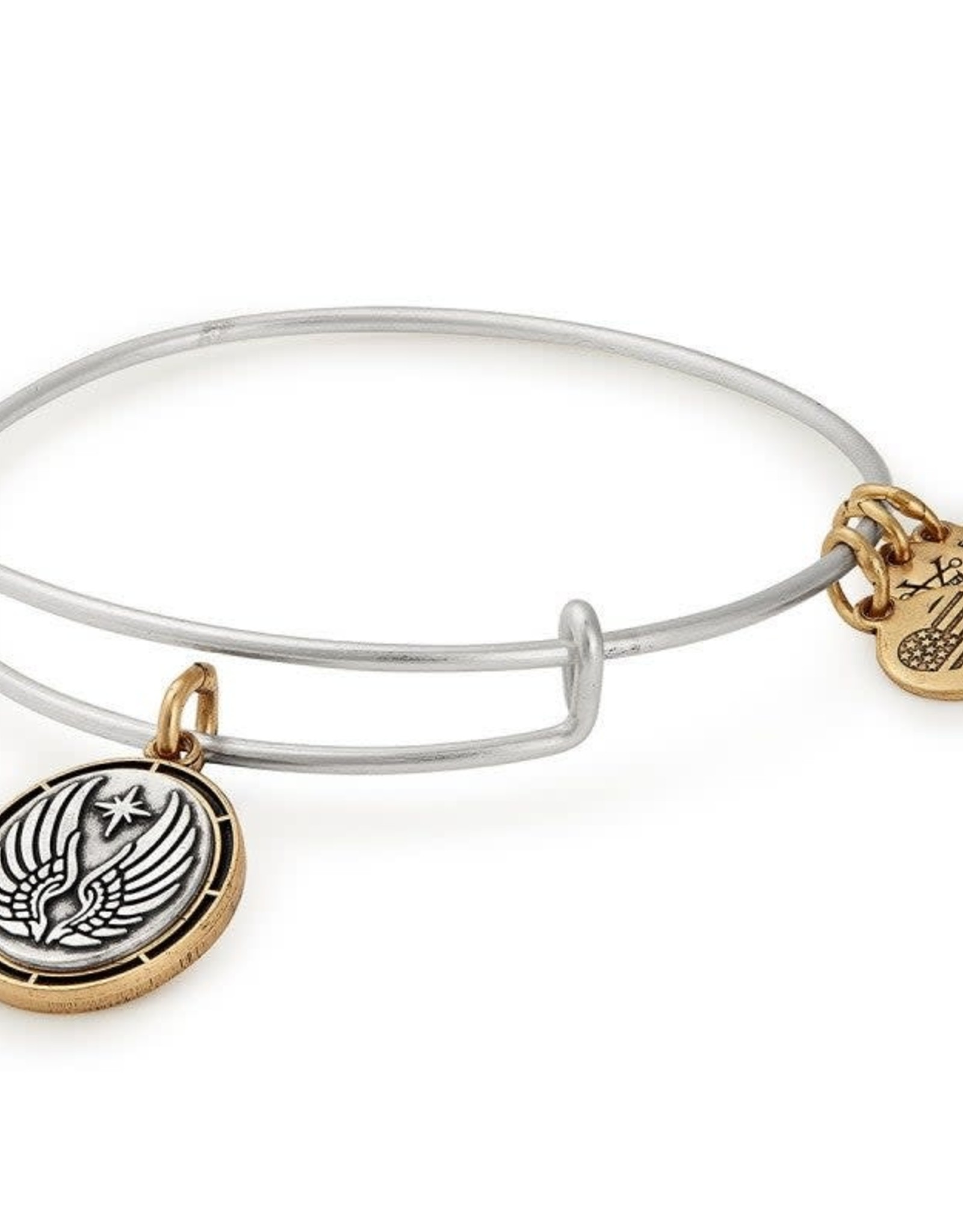 Alex and Ani Guardian lll, Two Tone, RS