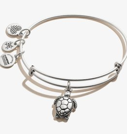 Alex and Ani Sea Turtle, Charity by Design