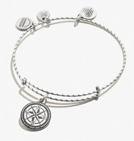 Alex and Ani Embossed Paint Charm, Compass, RS