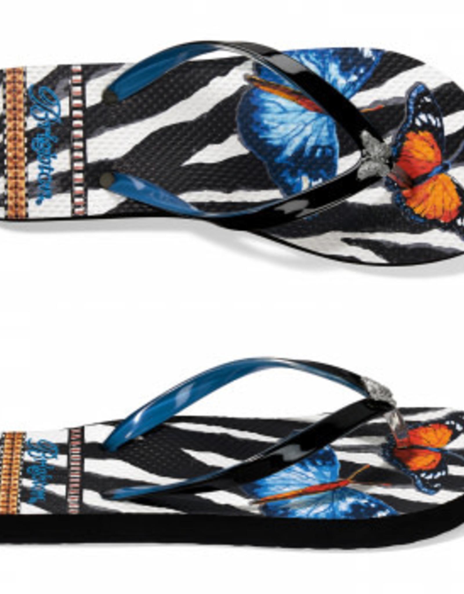 Brighton Brighton, Masai Flip Flops, Black