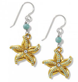 Brighton Brighton, Paradise Cove Starfish French Wire Earrings