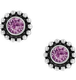 Brighton Twinkle Mini Post Earrings Amethyst