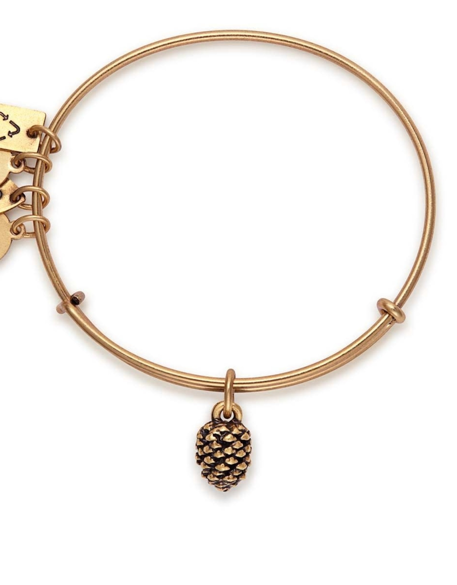 Alex and Ani Alex and Ani, Charity By Design, Pinecone, RG FINAL SALE