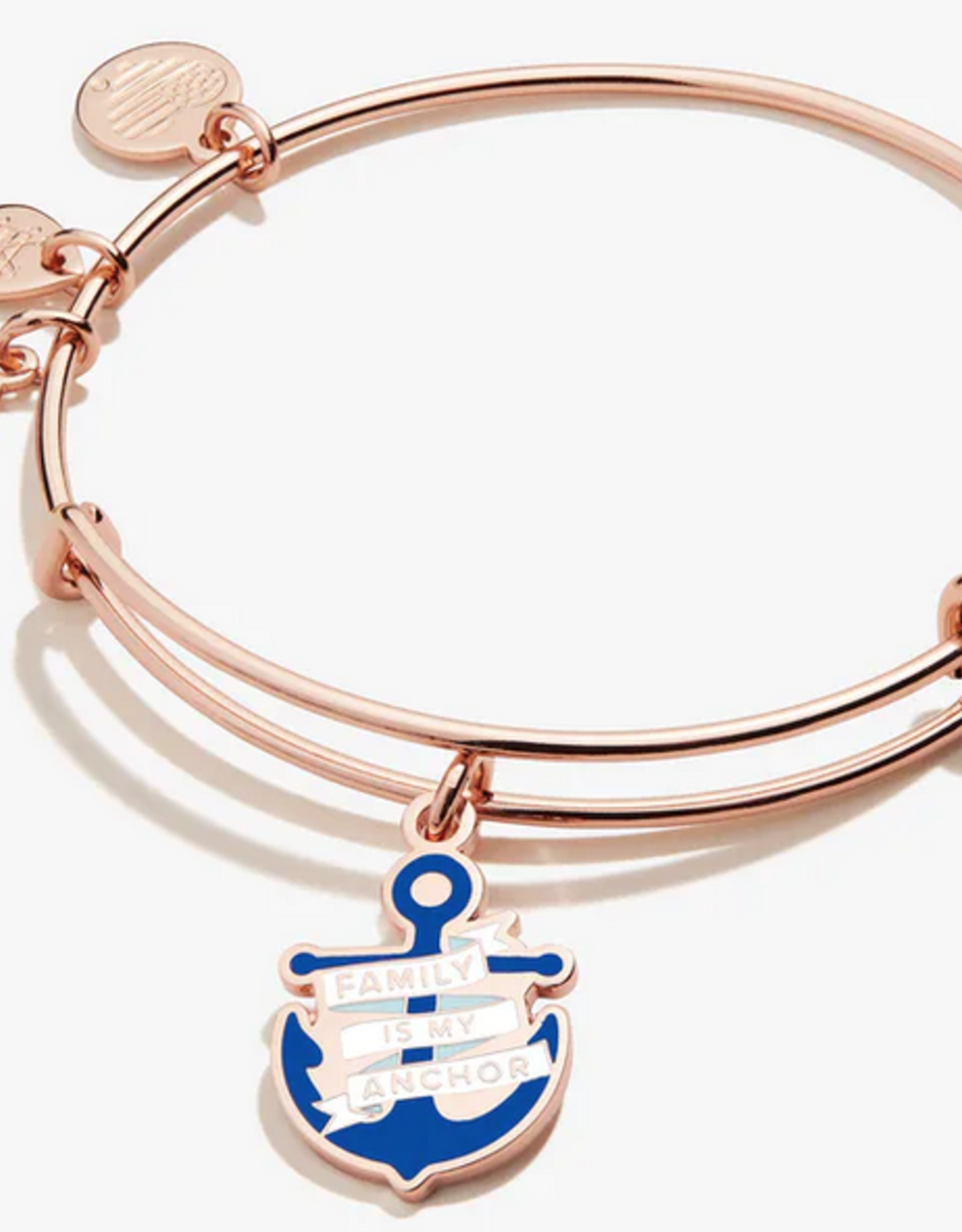 Alex and Ani Alex and Ani, Family is my Anchor, Shiny Rose Gold