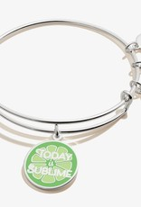 Alex and Ani Alex And Ani, Today Is Sublime, Shiny Silver