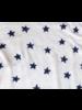 Banner Day Starry Night Starry Night