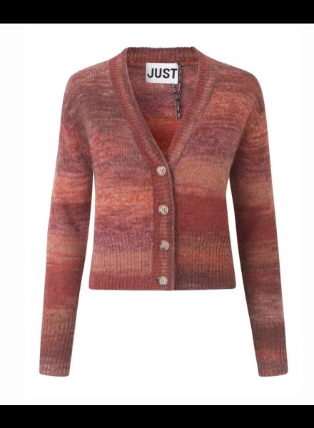 Just Female Dreas Knit Cardigan