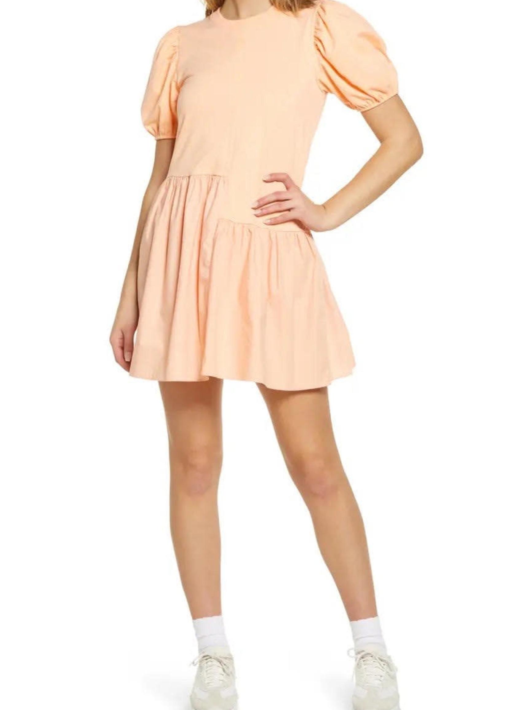 ENDLESS ROSE * JJ310D DRESS