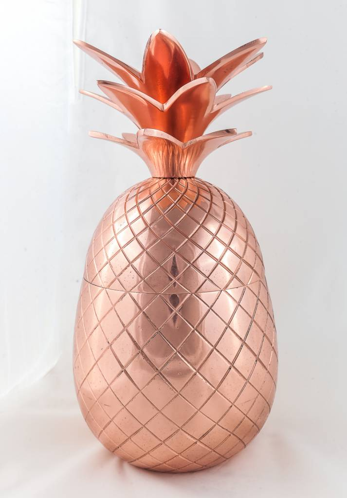 15-29-001COP - Large Pineapple Container