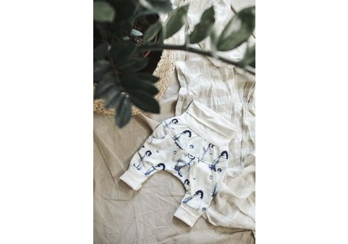 Little Yogi PANTALON ÉVOLUTIF - LITTLE MOON