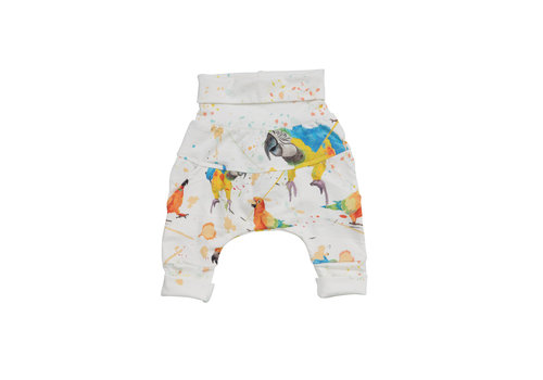 Little Yogi PANTALON ÉVOLUTIF - LITTLE PARROTS