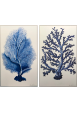 Pair of Blue & White Coral Panels