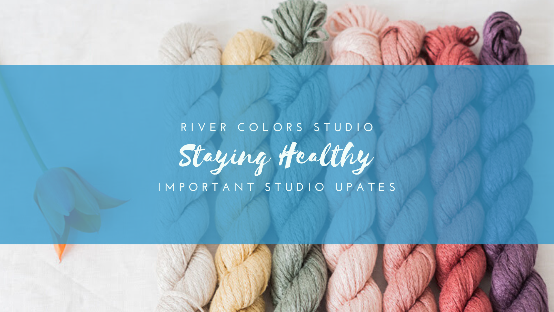 Staying healthy at River Colors Studio