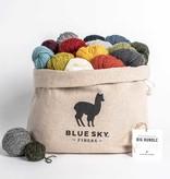 Blue Sky Fibers Blue Sky Fibers 14 Color Woolstok Light Bag Bundle