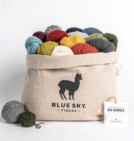 Blue Sky Fibers 14 Color Woolstok Light Bag Bundle
