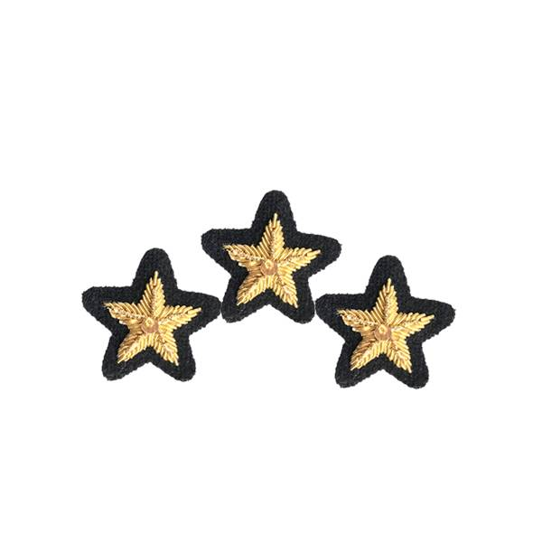 Emblazon Service Star