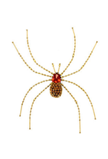 Trovelore CELLAR SPIDER BR