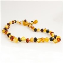 "Multi Baltic Amber Teething Necklace (10-11"")"