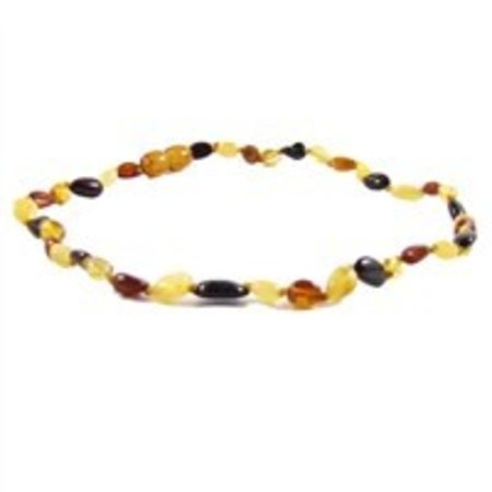 """The Amber Monkey Multi Baltic Amber Teething Necklace (10-11"""")"""