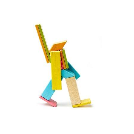 Tegu Tegu Magnetic Wooden Blocks- Classic 14pcs.