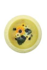 Habersham Candle Co Sunflower Lemon Vanilla Wax Pottery