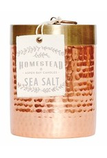 Aspen Bay Candles 14oz Hammered Canister Sea Salt Homestead Collection