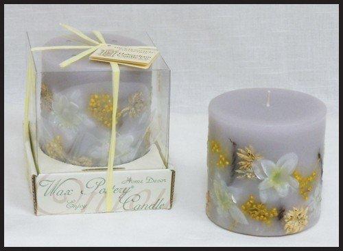 Habersham Candle Co Luminary Garden Vanilla