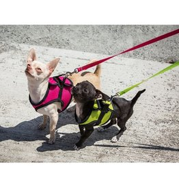 RC Pet RC Pet Step In Cirque Mesh Harness