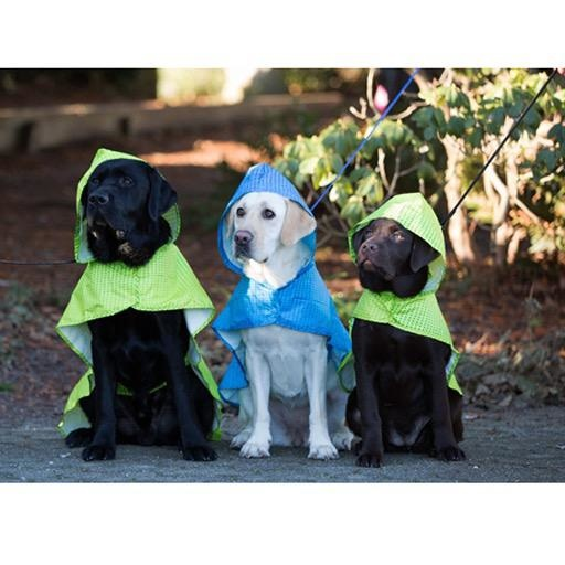 RC Pet RC Packable Rain Poncho