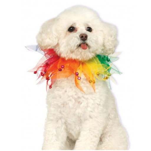 Rubies Rubies Rainbow Fancy Collar S/M