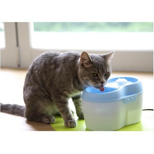 Cat H20 Cat H20 Fountain 2L White