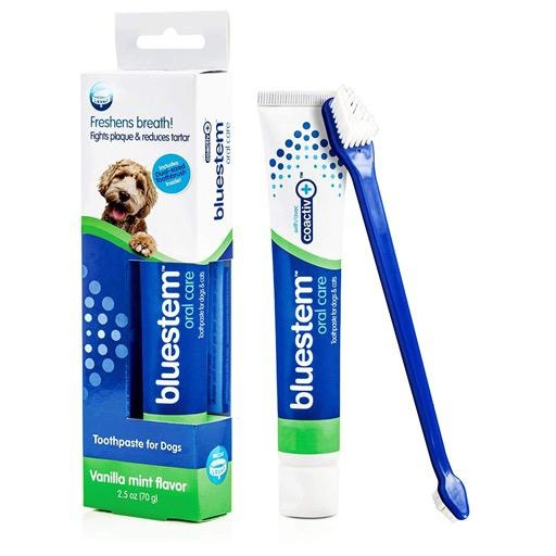 Bluestem Oral Care Toothpaste and Toothbrush Vanilla Mint 70g