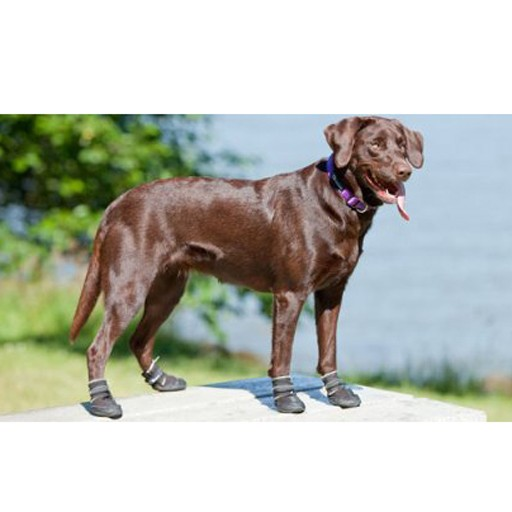 RC Pet Canine Equipment Ultimate Trail Boots