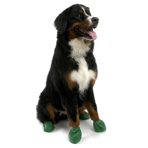 Pawz Dog Boots, Green, XL