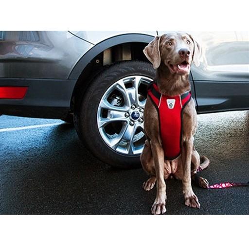 RC Pet Canine Friendly Vented Vest Harness