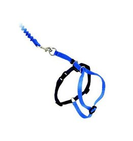 Easy Walk Cat Harness w/Leash