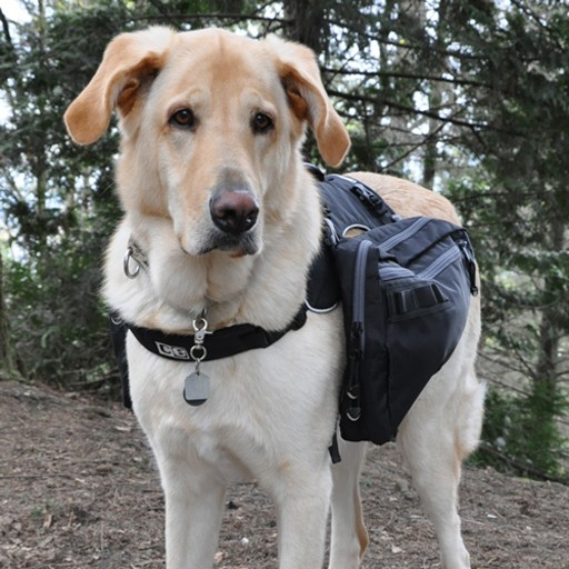 RC Pet Canine Equipment Ultimate Trail Pack
