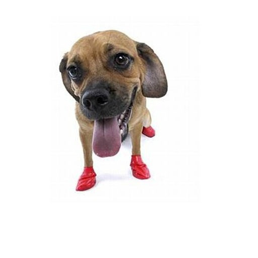 Pawz Dog Boots, Red, S