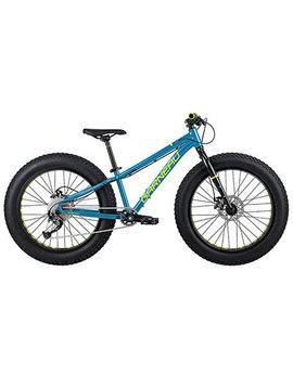 Gros Louis 24 Fat Bike