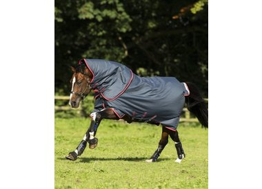 For Your Horse