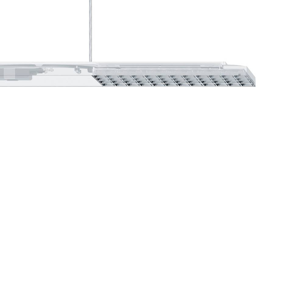 Erco Jilly Linear Pendant