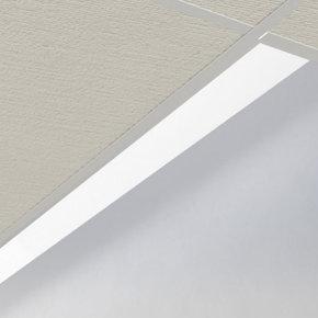 Edge Evolution Outline LED