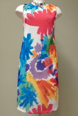 SOFT WORKS Bold Print Dress