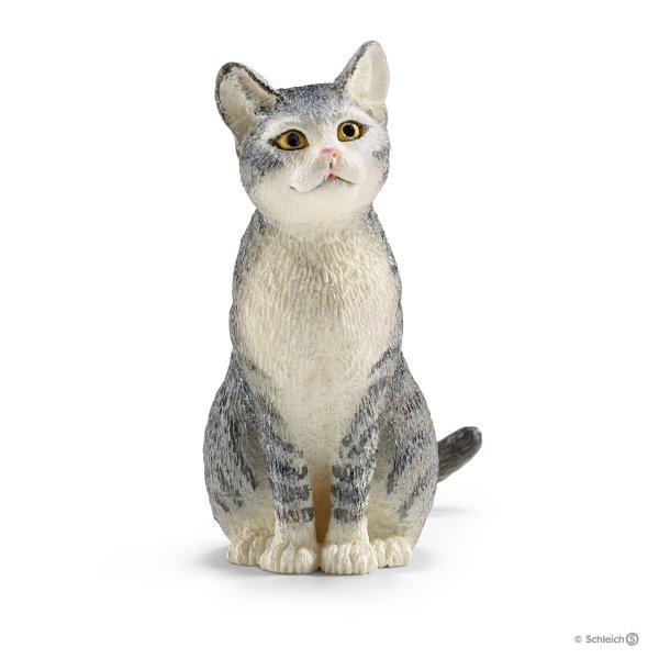 Cat, sitting