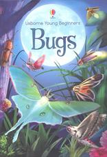 Bugs - Beginners