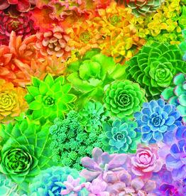 White Mountain Puzzle Succulent Rainbow