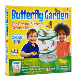 Insect Lore Butterfly Garden - Original