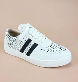 Ccocci Stella Black Dots Sneakers